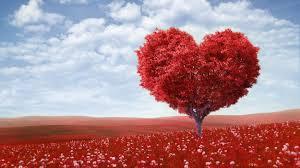Salah satu simbol kasih sayang yang diperdagangkan saat Valentine Day: cinta atau serigala?