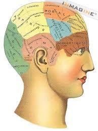 Otak dan fungsi-fungsi psikologis yang berbeda di dalamnya