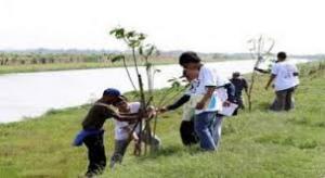 Amal jariah dalam bentuk menanam pohon - salah satu tabungan sebelum meninggal.