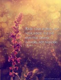 Rumi - bagus