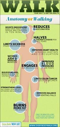 Berbagai manfaat jalan kaki bagi tubuh.